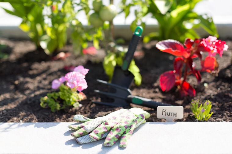 Gardening gloves beside garden at Amica On The Gorge