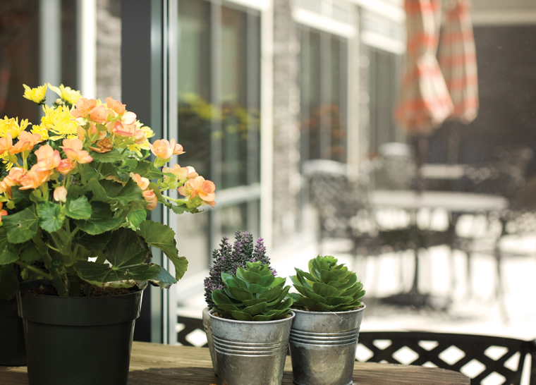 Plants on patio table at Amica senior Aspen Woods senior living residence.
