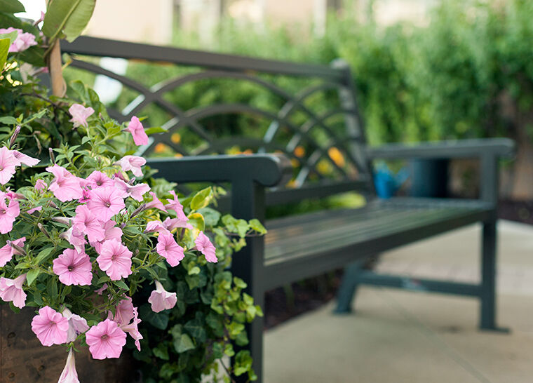 Amica Whitby senior living residence park bench with pink flowers.