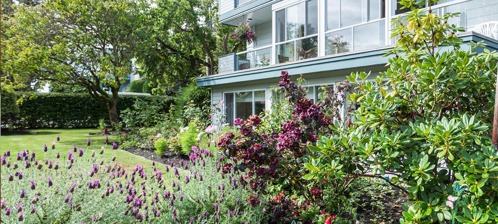 Outdoor garden at Amica Douglas House senior living residence.